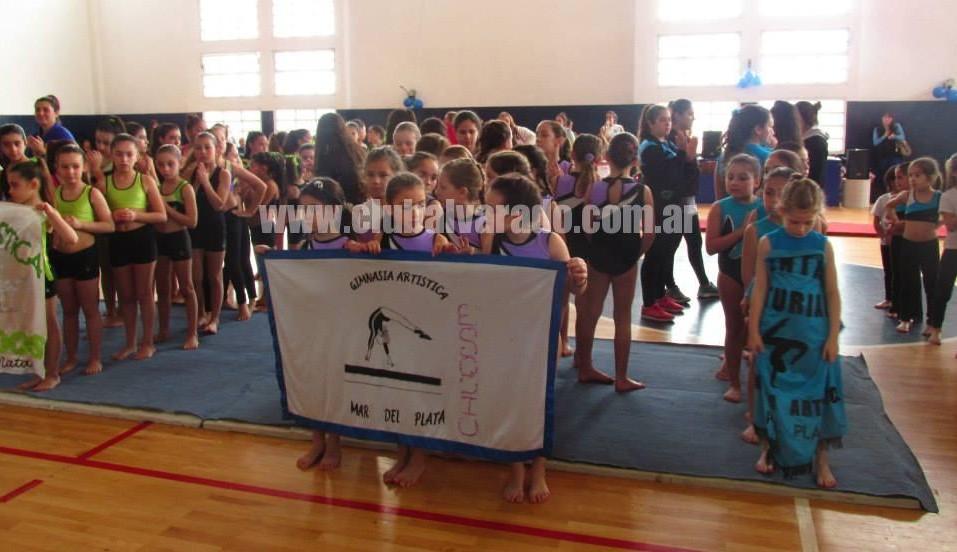 Exitoso Torneo de Gimnasia en Alvarado