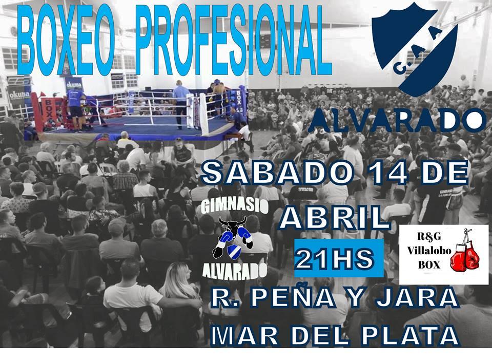 #BoxeoLlega el segundo Festival en Alvarado