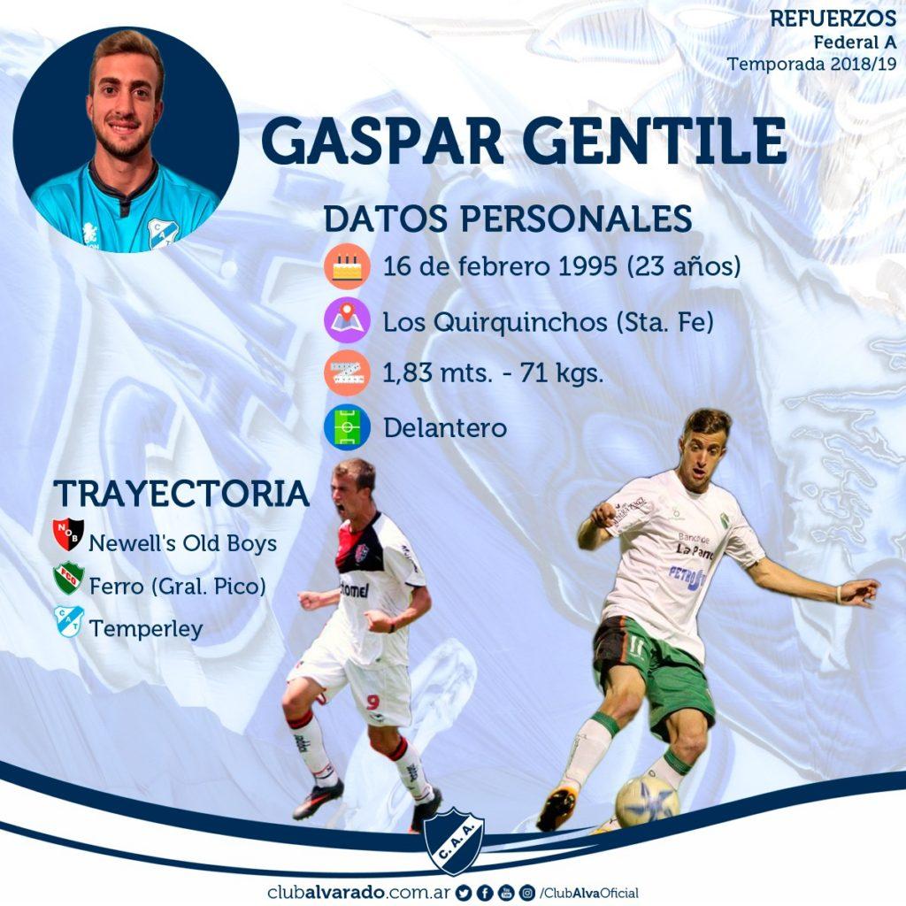 Gaspar Gentile, un refuerzo de calidad para Alvarado