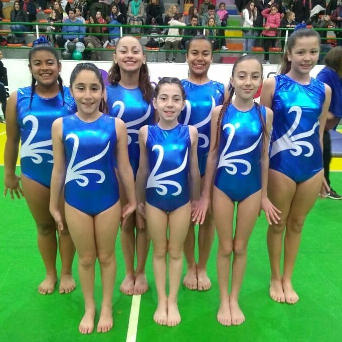 Gran participación del equipo de Gimnasia Artística